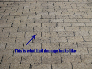Broomfield -hail damage on roofs