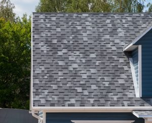 broomfield-roof-shingle